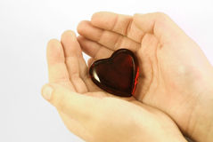 Giving you my heart. An image of a child's hands, offering a red heart Stock Photography