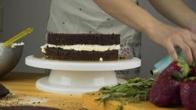 Givrage de versement sur le gâteau Fabrication du gâteau de couche de chocolat série banque de vidéos