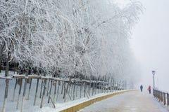 Givre le fleuve Songhua de brouillard dense de scène de neige Photos libres de droits