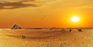 Giza desert panorama with the Great Pyramids and bedouins.  stock images