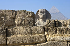Giza. Egypt, archaeological site of Giza, the sphinx Royalty Free Stock Image