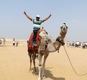 GIZA, EGYPT - MAY 15, 2013: Tourist rides on a camel for the first time in front of the pyramids of Egypt. Stock Photos