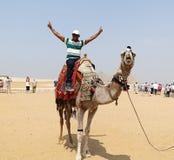 GIZA EGYPTEN - MAJ 15, 2013: Turisten rider på en kamel för första gången framme av pyramiderna av Egypten arkivfoton