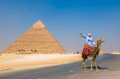 GIZA EGYPTEN - September, 16, 2008: Kamelryttare och pyramid av Kh Royaltyfri Bild