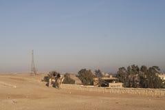 Giza, Il Cairo, Egitto - 23 dicembre 2006: Poliziotti sui cammelli vicino Immagini Stock Libere da Diritti