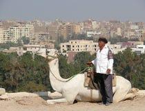 Giza miasto od above. Zdjęcie Royalty Free