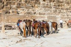 Giza Necropolis. Egypt Royalty Free Stock Image