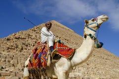 GIZA PLATEAU, CAIRO - January 24, 2010: Stock Photo