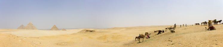 Giza - Pyramiden, Händler und cammels Stockfoto