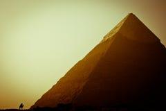 giza stor pyramid Royaltyfri Bild
