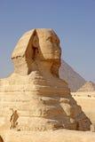 giza stor sphinx Arkivbild