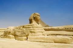 giza stor sphinx Royaltyfri Foto