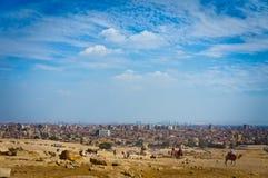 Gizeh, Egypte Photo stock
