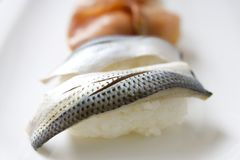 Gizzard shad sushi Stock Photos
