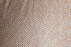 Gjord bladkorgarbetehand - arkivbild