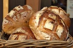 gjord brödutgångspunkt Royaltyfri Bild