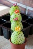 gjord easter äggbild grön livstid blommaillustrationen shoppar smellcomp Äggjakt matlagning Ovanlig idé lyckliga easter Naturlig  arkivfoton
