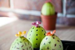gjord easter äggbild grön livstid blommaillustrationen shoppar smellcomp DIY och handgjort Målat ägg Vårplantor växthus Blomma fö royaltyfria foton