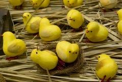 gjord fågelungehand - arkivfoto