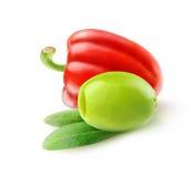 Gjord full av hål grön oliv och röd spansk peppar Royaltyfri Bild