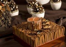 gjord kanelbrun garnering för jul royaltyfria bilder
