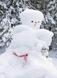 gjord mannatur rådig snowman Royaltyfri Fotografi
