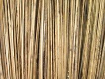 gjorda leaves för leafen för kvastkokosnötutgångspunkten använde byinvånarevishet En vishet av byinvånare som göras av kokosnötsi Fotografering för Bildbyråer