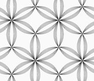 Gjorde randig slanka grå färger för monokrom sex pedal- blommor Arkivfoton