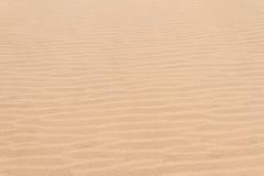 Gjorde sammandrag linjer för sanddyn Arkivbild