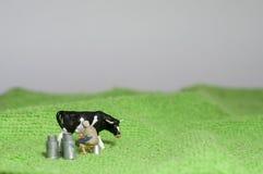Gjort mejeri Arkivfoto