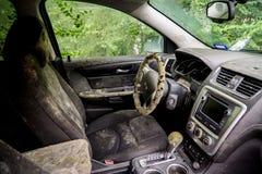 Gjuta den växande insidan en översvämmad bil efter orkanen Harvey arkivbilder