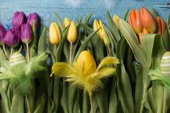 Glücklicher Ostern-Hintergrund mit gelben Tulpen stockfotografie