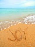 Glädje som är skriftlig i sanden Arkivfoto