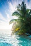 Glänsande sol Fotografering för Bildbyråer
