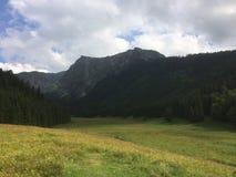 Glänta i berg Arkivbild