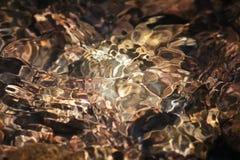 Glänzende Beschaffenheit von farbigen Steinen in einem klaren Gebirgsbach Stockfotos