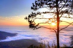 Glänzende Dämmerung Sun mit Nebel Stockbild