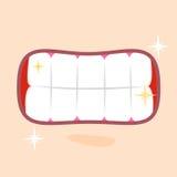 Glänzende gesunde Zähne schließen oben Stockfotos