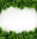 Glänzende grüne Weihnachtsbaum-Kiefern-Niederlassungen mögen Rahmen Stockfoto