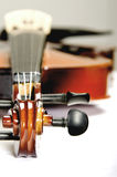 Glänzende Violine flacher DOF stockfoto