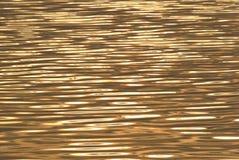 Glänzende Welle Stockbilder