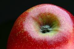 Glänzender Apfel Lizenzfreies Stockfoto