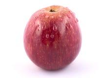 Glänzender Apfel Lizenzfreie Stockfotografie