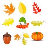 Glänzender Autumn Natural Icons Vector Illustration Stockfoto