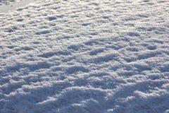Glänzender Frost in der Sonne, Blaulicht Frostwetter im Winter Silberner Hintergrund Stimmung des neuen Jahres stockfotografie