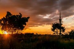Glänzender Sonnenuntergang auf dem Savanns in Brasilien Lizenzfreies Stockbild
