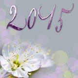 2015, glänzender Text und Kirschbaumblume Stockfotografie