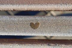 Glänzender und fabelhafter Frost Lizenzfreie Stockbilder