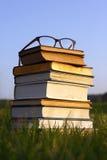 Gläser auf Stapel Büchern draußen Stockfotografie