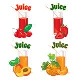 Gläser für Saft von den Kirschen, von den Erdbeeren, von den Pfirsichen und von den Kürbisen stock abbildung